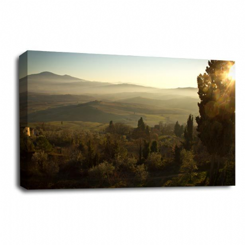 Forest Landscape Canvas Art Wood Trees Wall Picture Print
